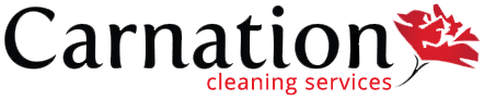 Residential Cleaning Services in SE Wisconsin Carnation Services